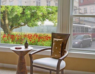 Fensterfolie - Sichtschutz Fenster Sommerwiese - Fensterbilder