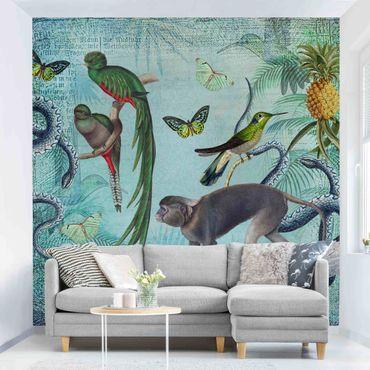 Tapete selbstklebend - Colonial Style Collage - Äffchen und Paradiesvögel - Fototapete Quadrat