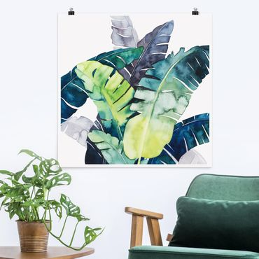 Poster - Exotisches Blattwerk - Banane - Quadrat 1:1