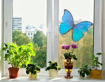 Fensterfolie - Fenstersticker No.444 Blauer Morphofalter - Fensterbilder