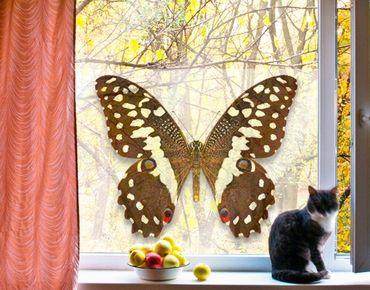 Fensterfolie - Sichtschutz Fenster Edelfalter in Erdtönen - Fensterbilder