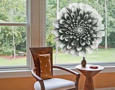 Fensterfolie - Fenstersticker No.595 Aster II - Fensterbilder