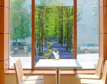 Fensterfolie - Sichtschutz Fenster Wanderweg von Herfordshire - Fensterbilder