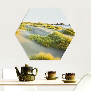 Hexagon Bild Forex - Dünen und Gräser am Meer