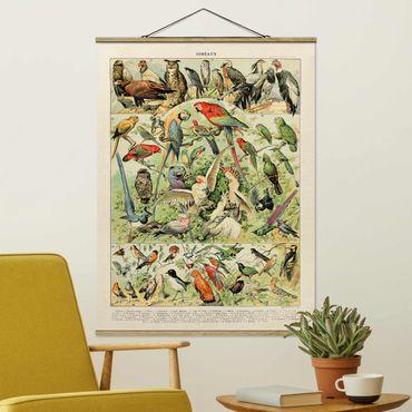 Stoffbild mit Posterleisten - Vintage Lehrtafel Vögel - Hochformat 3:4