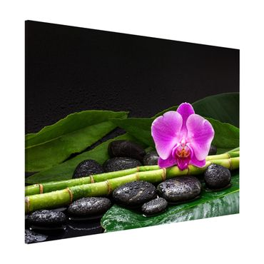 Magnettafel - Grüner Bambus mit Orchideenblüte - Memoboard Querformat 3:4