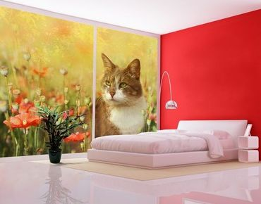 Fensterfolie - XXL Fensterbild Katze im Mohnfeld - Fenster Sichtschutz