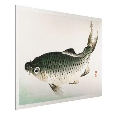 Aluminium Print gebürstet - Asiatische Vintage Zeichnung Karpfen - Querformat 3:4