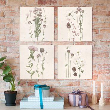 Leinwandbild 4-teilig - Herbarium in rosa Set I