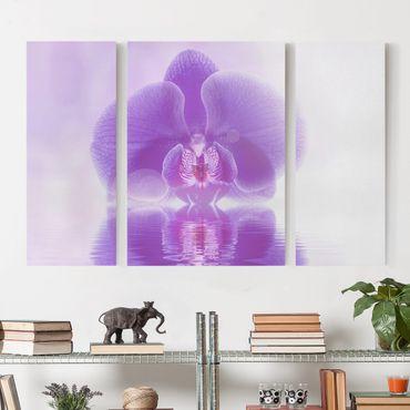 Leinwandbild 3-teilig - Lila Orchidee auf Wasser - Triptychon
