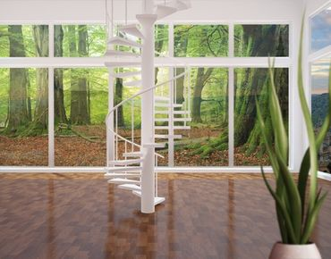 Fensterfolie - XXL Fensterbild Mighty Beech Trees - Fenster Sichtschutz