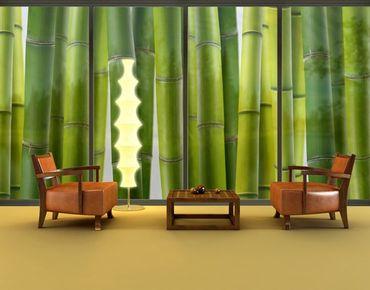 Fensterfolie - XXL Fensterbild Bambuspflanzen - Fenster Sichtschutz