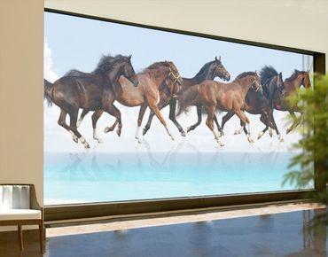 Fensterfolie - XXL Fensterbild Pferdeherde - Fenster Sichtschutz