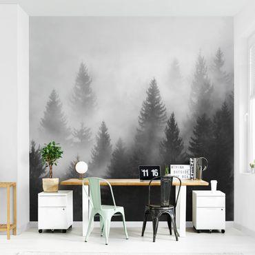 Fototapete - Nadelwald im Nebel Schwarz Weiß - Fototapete