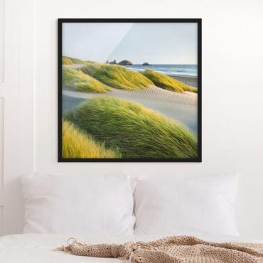Bild mit Rahmen - Dünen und Gräser am Meer - Quadrat 1:1