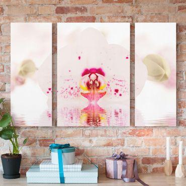 Leinwandbild 3-teilig - Gepunktete Orchidee auf Wasser - Triptychon