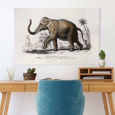 Leinwandbild - Vintage Lehrtafel Elefant - Querformat 2:3