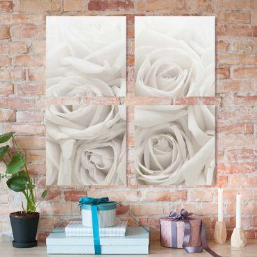 Leinwandbild 4-teilig - Weiße Rosen