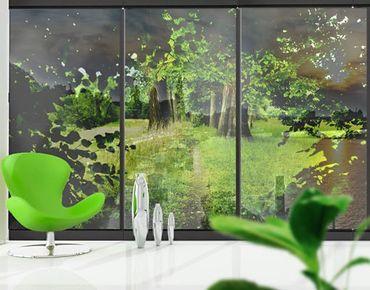 Fensterfolie - XXL Fensterbild Verborgene Lichtung - Fenster Sichtschutz