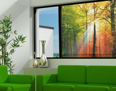 Fensterfolie - Sichtschutz Fenster Morning Light - Fensterbilder