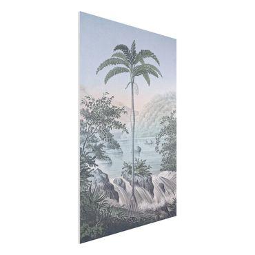 Forex Fine Art Print - Vintage Illustration - Landschaft mit Palme - Hochformat 3:2