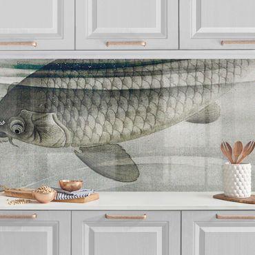 Küchenrückwand - Vintage Illustration Asiatische Fische III