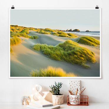 Poster - Dünen und Gräser am Meer - Querformat 3:4