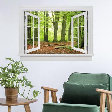 3D Wandtattoo - Offenes Fenster Mighty Beech Trees