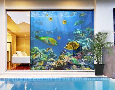 Fensterfolie - XXL Fensterbild Underwater Lights - Fenster Sichtschutz