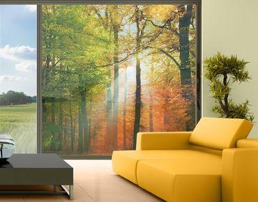 Fensterfolie - XXL Fensterbild Morning Light - Fenster Sichtschutz