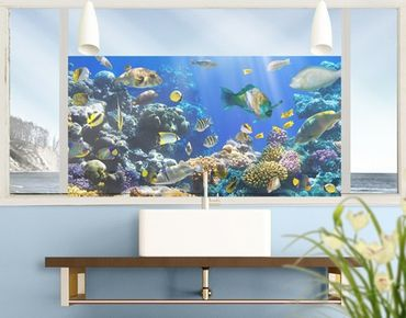 Fensterfolie - Sichtschutz Fenster Underwater Reef - Fensterbilder