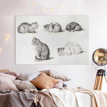 Leinwandbild - Vintage Zeichnung Katze I - Querformat 2:3