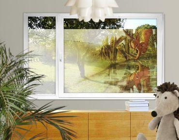 Fensterfolie - Sichtschutz Fenster Einhörnchen Spiegelbild - Fensterbilder