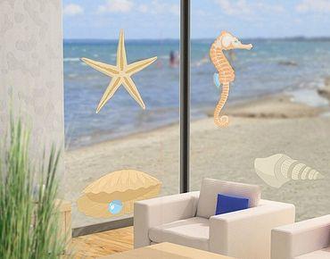 Fensterfolie - Fenstersticker No.RY28 Muschelmix - Fensterbilder