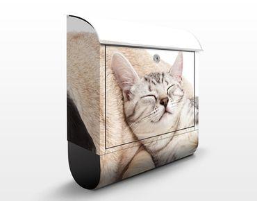 Briefkasten mit Zeitungsfach - Beste Freunde - Briefkasten mit Tiermotiv