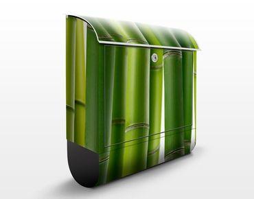Wandbriefkasten - Bambuspflanzen - Briefkasten Grün
