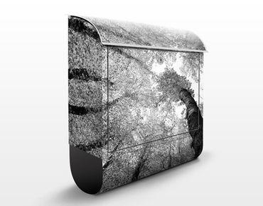 Wandbriefkasten - Bäume des Lebens II - Briefkasten Grau