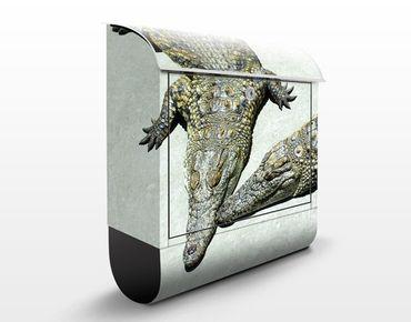 Briefkasten mit Zeitungsfach - Crocodile Romance - Briefkasten mit Tiermotiv