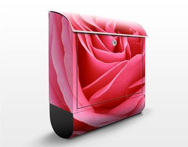 Briefkasten mit Zeitungsfach - Lustful Pink Rose - Blumen Rosa, Pink