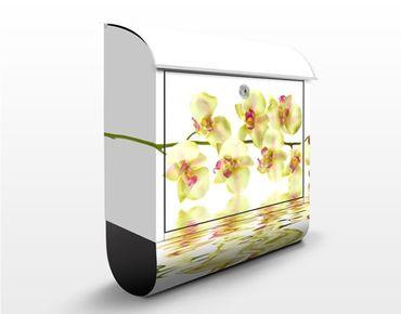 Briefkasten mit Zeitungsfach - Dreamy Orchid Waters - Briefkasten Blumen