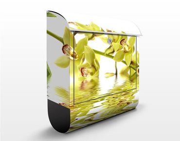 Briefkasten mit Zeitungsfach - Elegant Orchid Waters - Blumen Gelb