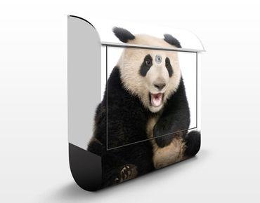Briefkasten mit Zeitungsfach - Lachender Panda - Briefkasten mit Tiermotiv