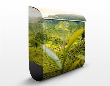 Briefkasten mit Zeitungsfach - Teagarden - Hausbriefkasten Grün