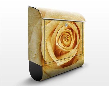 Briefkasten mit Zeitungsfach - Vintage Rose - Blumen Gelb
