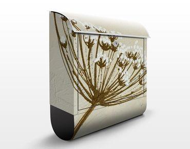 Briefkasten Vintage - Wildflower - Briefkasten Beige mit Zeitungsrolle
