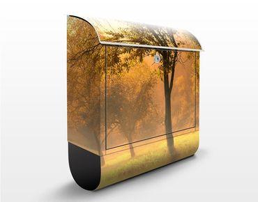 Briefkasten mit Zeitungsfach - Herbstmorgen - Hausbriefkasten Orange