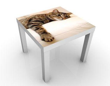 Beistelltisch - Cat Chill Out