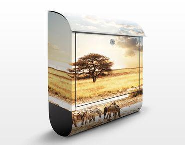 Briefkasten mit Zeitungsfach - Das Leben der Zebras - Hausbriefkasten