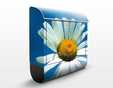 Briefkasten mit Zeitungsfach - Ladysun - Briefkasten Blumen