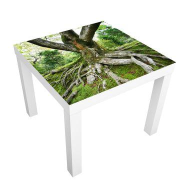Möbelfolie für IKEA Lack - Klebefolie Alter Baum